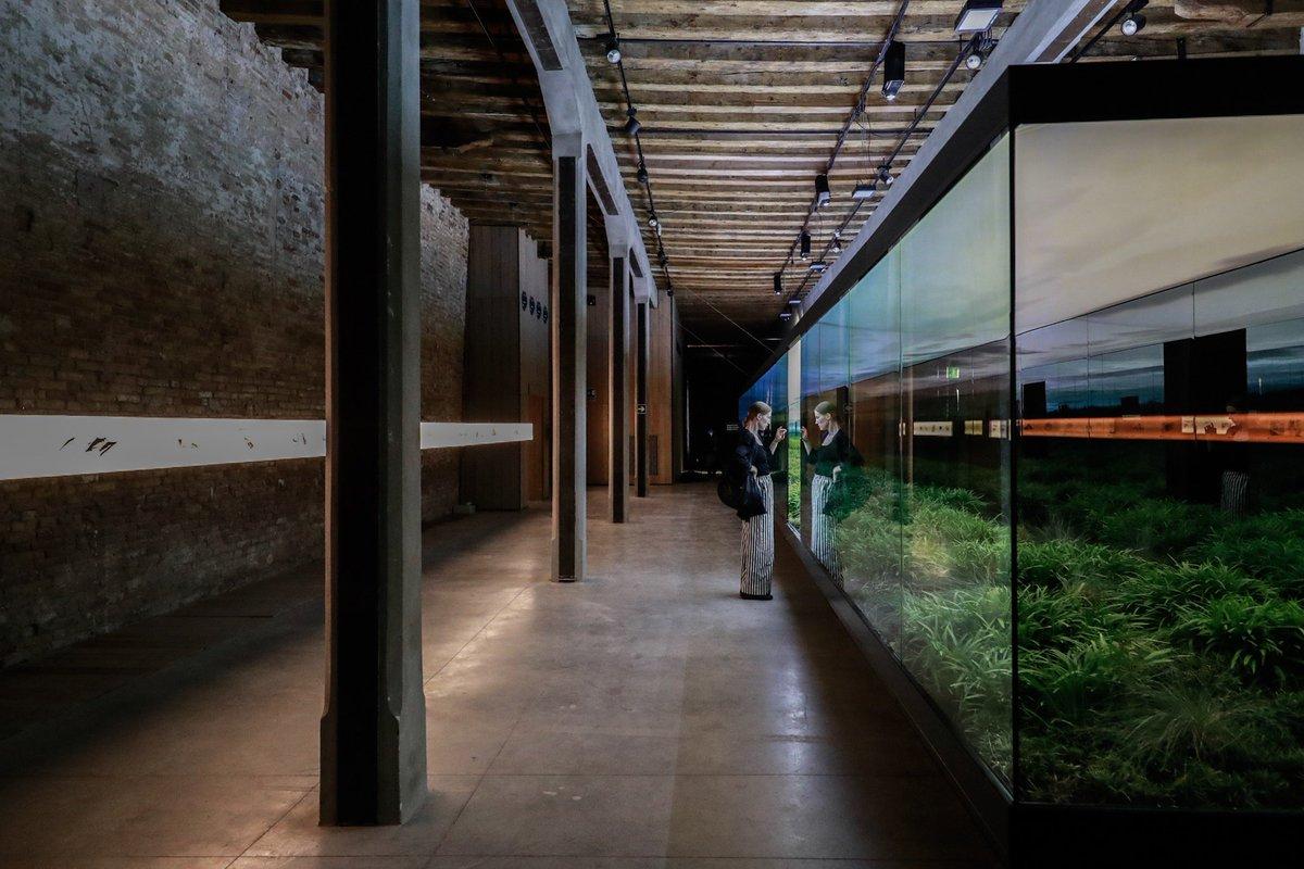 biennale di venezia2